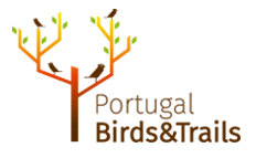 Portugal Birds and Trails